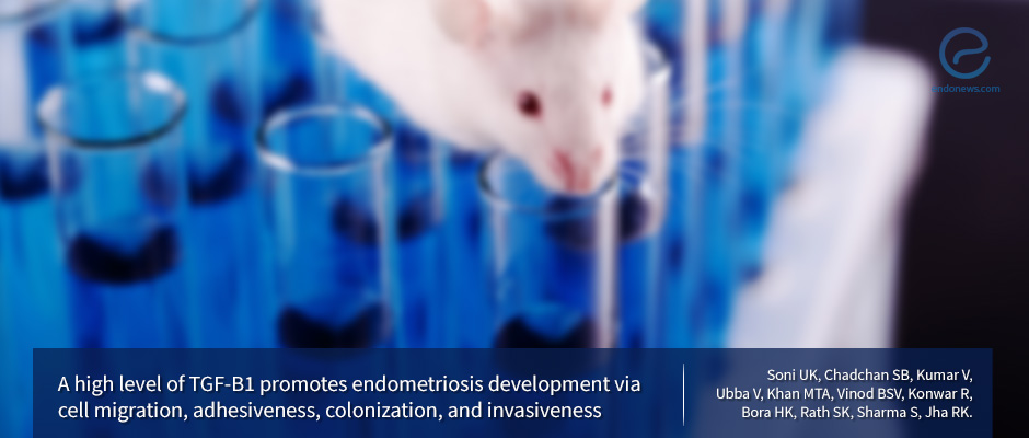 Study Sheds Light on the Molecular Mechanism of Endometriosis Development