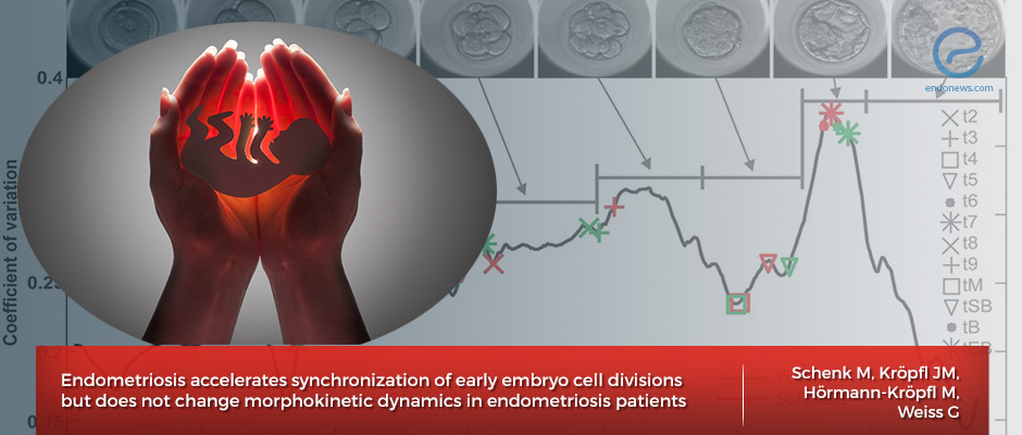 Impact of Endometriosis on Embryo Development