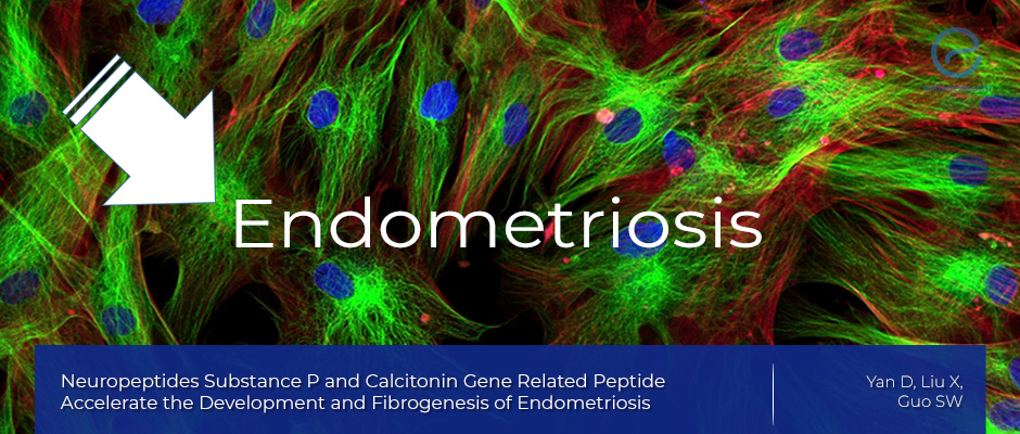 Study Sheds Light on Physiological Processes Associated with Endometriosis