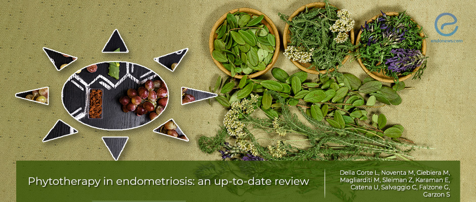 Phytotherapy as an alternative endometriosis treatment