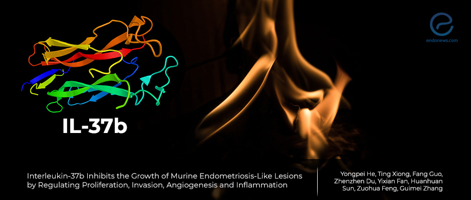 Interleukin-37b inhibits the growth of murine endometriosis-like lesions