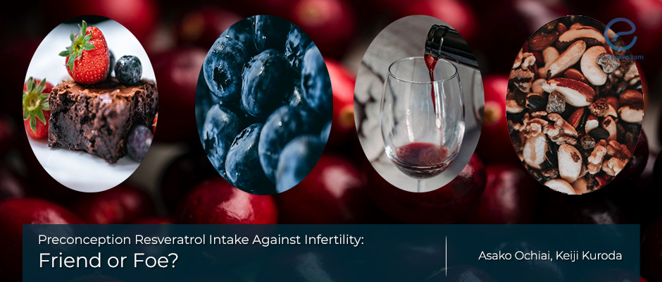 Resveratrol for infertility: A frenemy?