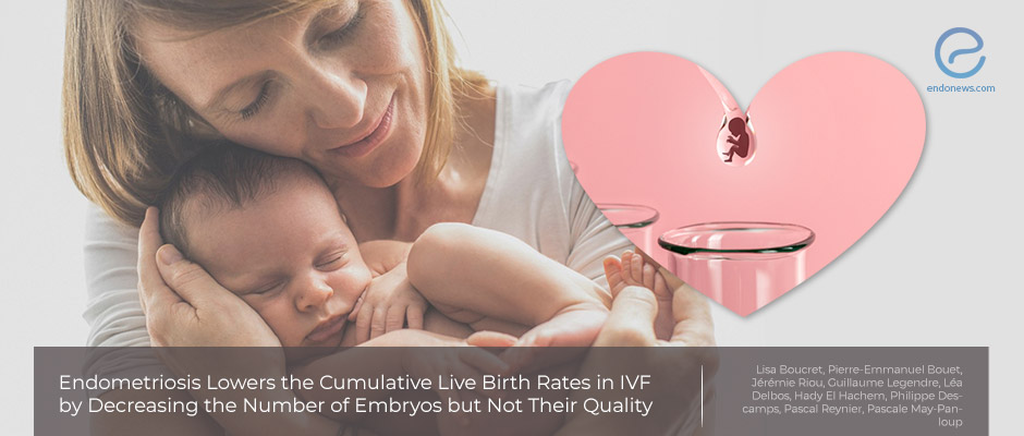 Effect of Endometriosis on IVF Success Rates