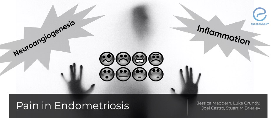 Pain in Endometriosis
