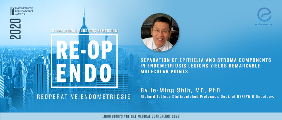 Separation of epithelia and stroma components in endometriosis lesions yields remarkable molecular points - Ie-Ming Shih, MD, Ph.D.
