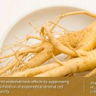 Therapeutic potential of ginseng based compound in preclinical models of endometriosis