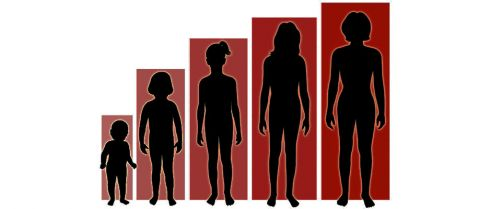 Body size, adult height and endometriosis