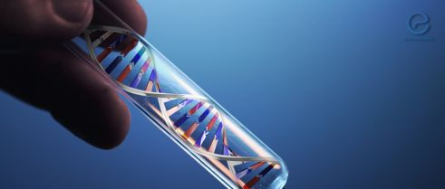New Genetic Variants Associated with Endometriosis May Offer New Opportunities